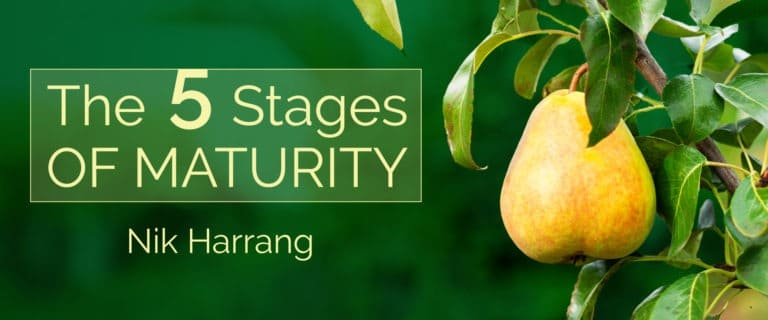 the 5 stages of maturity