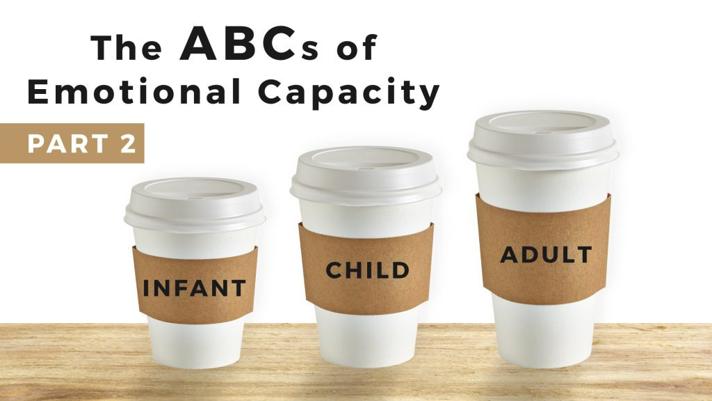 the abcs of emotional capacity warner PART 2